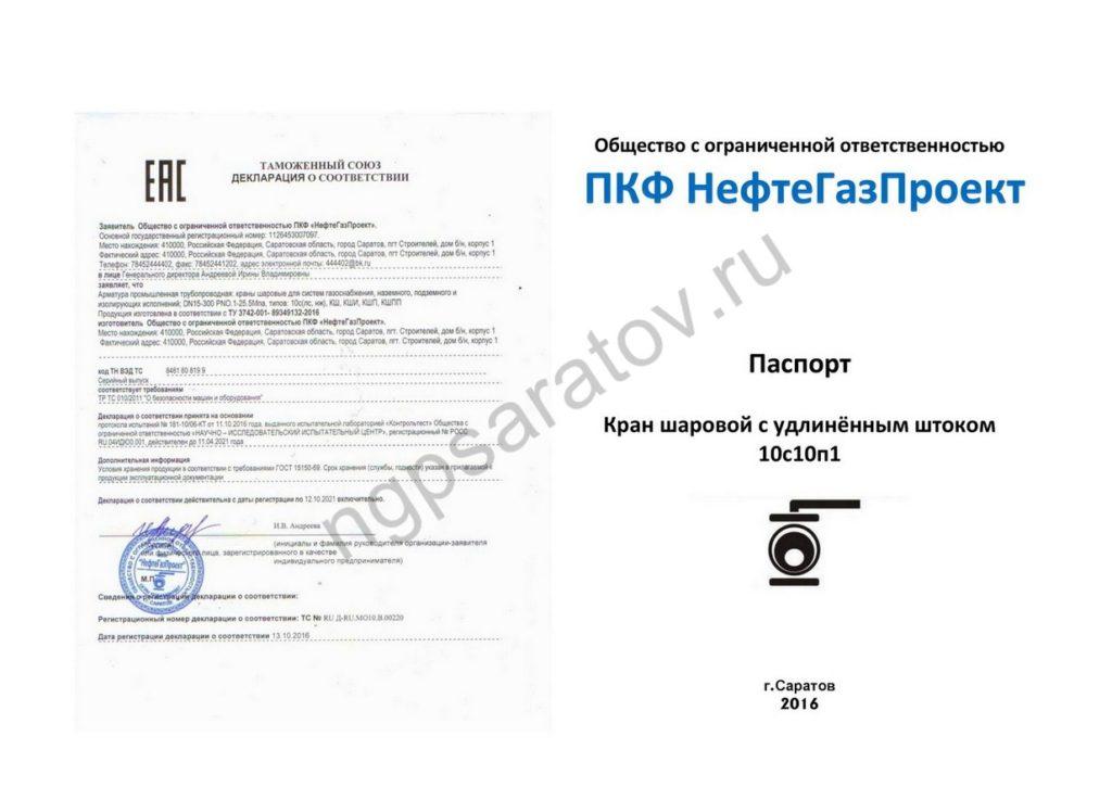 Паспорт 10с10п1